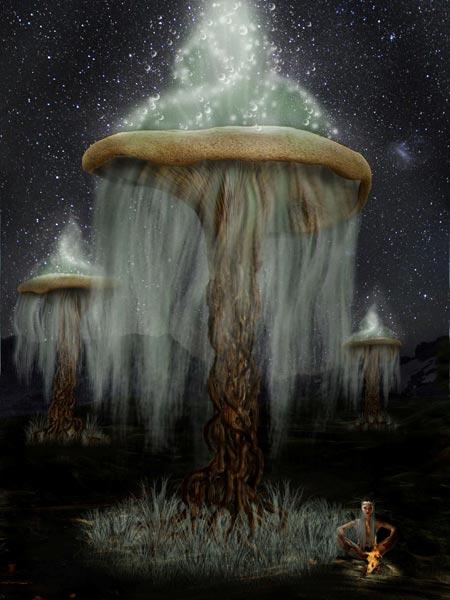 Snowdrop гриб