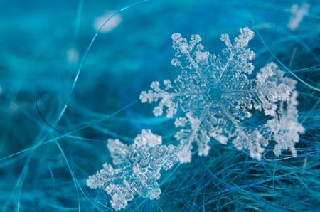 Зимний конкурс рисунка Снежинка