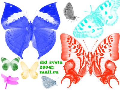 http://globator.net/uploads/posts/2007-10/1191585714_babochki.jpg