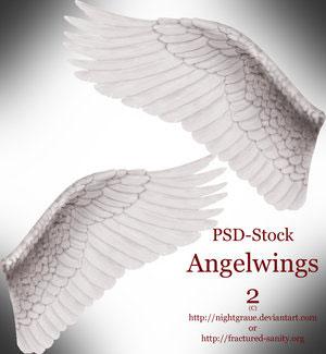 Крылья ангелов 2