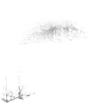 Рисование кистями в Adobe Photoshop