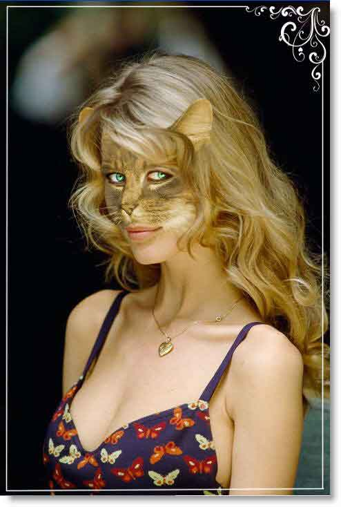 Уроки Photoshop:Девушка-кошка (фотомонтаж)