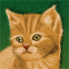 Рисуем котенка на планшете