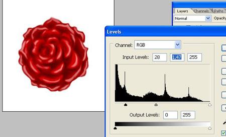 роза на рисунке