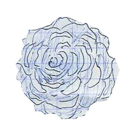 роза в Фотошопе