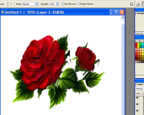 рисунок розы