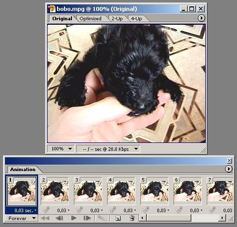Урок Adobe Photoshop по анимации 3
