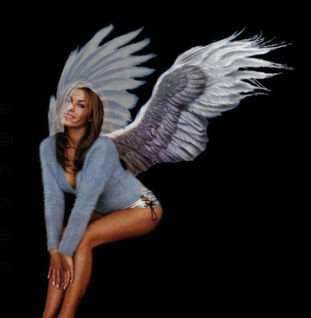 Фото монтаж крылышек в Фотошопе