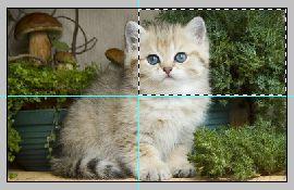 Урок по эффекту разрезанного фото в Фотошопе