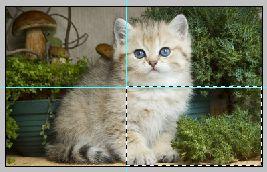Урок по эффекту разрезанного фото в Фотошопе 1