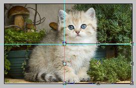 Урок по эффекту разрезанного фото в Фотошопе 4