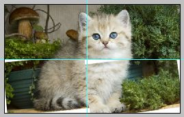 Эффект разрезанного фото