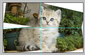 Урок по эффекту разрезанного фото в Фотошопе 8