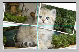 Урок по эффекту разрезанного фото в Фотошопе 16