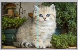 Создаем эффект разрезанного фото в Фотошопе